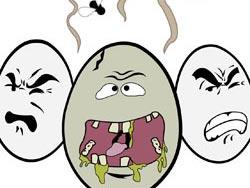 Water smells like rotten eggs