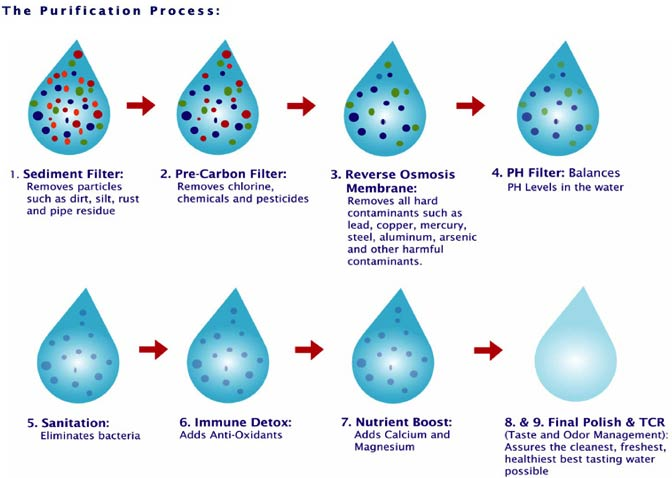9stage purification process