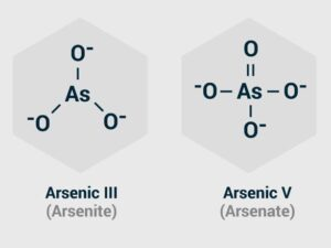 Arsenic III vs Arsenic V
